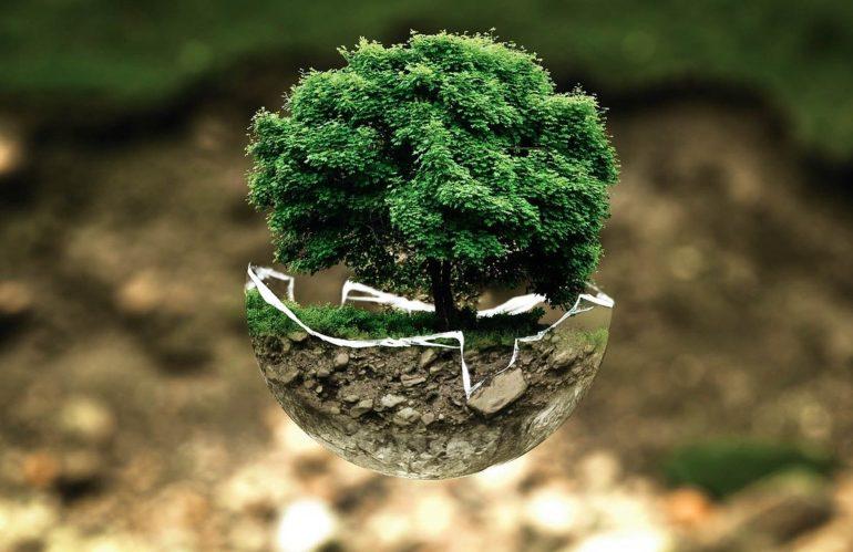 L'impact environnemental des voitures électriques
